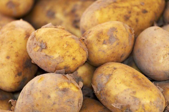 kartoffel-doerren