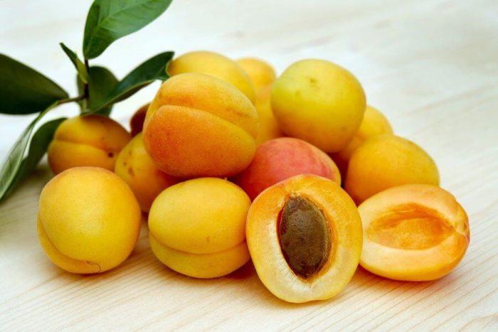 aprikosen-doerren-trocknen