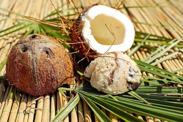 kokosnuss-doerren
