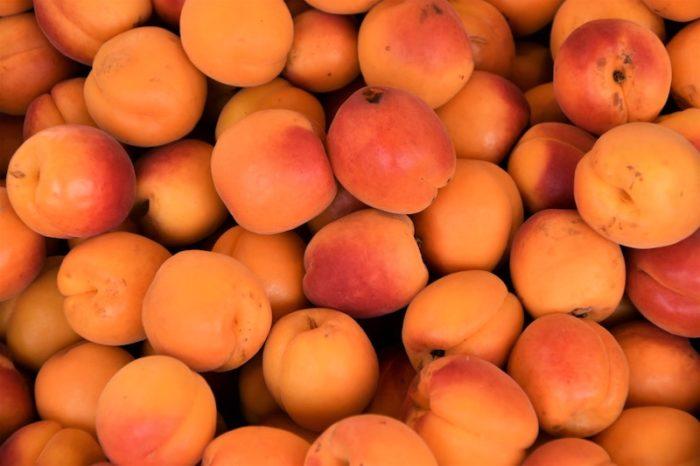 Aprikosenkonfituere-mit-Schuss-einkochen