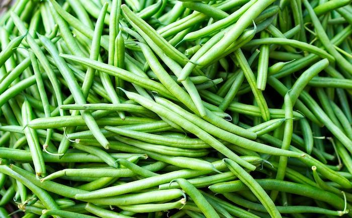 bohnen-fermentieren